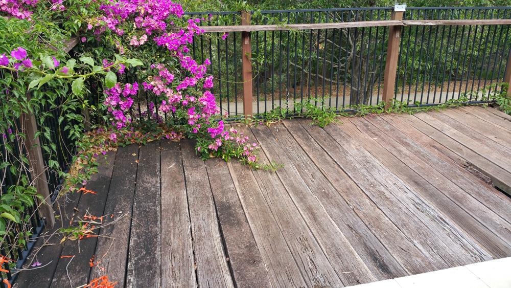 Decking Repair Brisbane AFTER